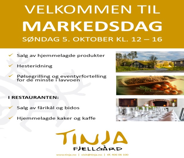 Tinja_markedsdag